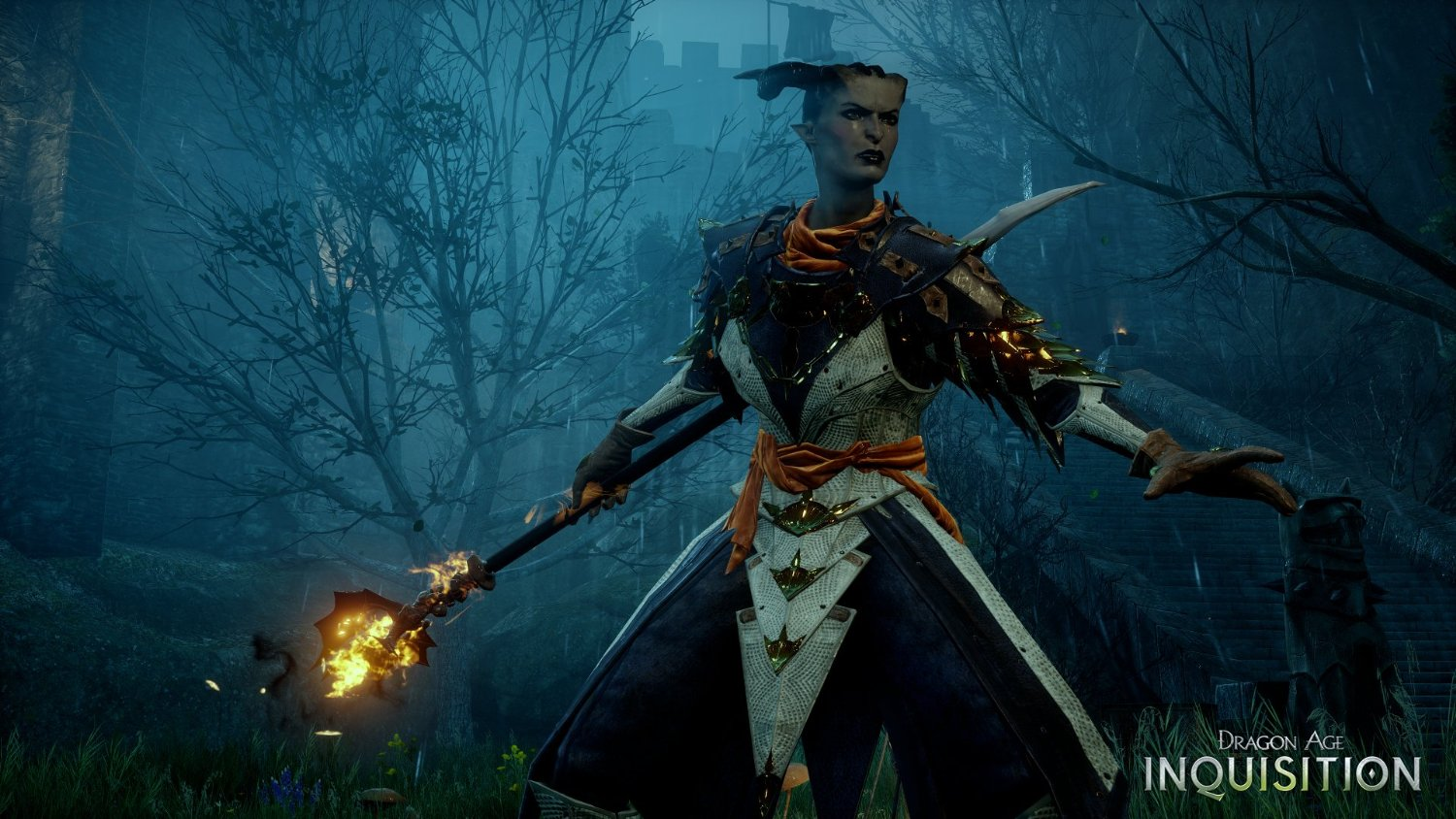 Official Dragon Age: Inquisition / Dragon Age 3 (PC)