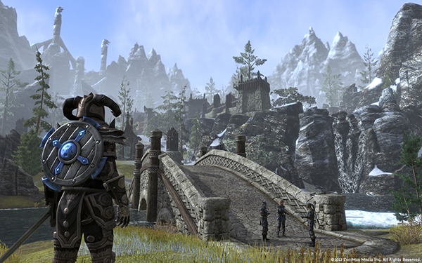 The Elder Scrolls Online Tamriel Unlimited (PC/Mac) фото